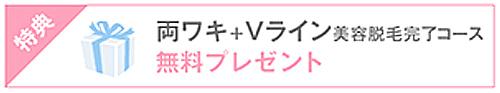 両ワキ+Vライン通い放題が0円